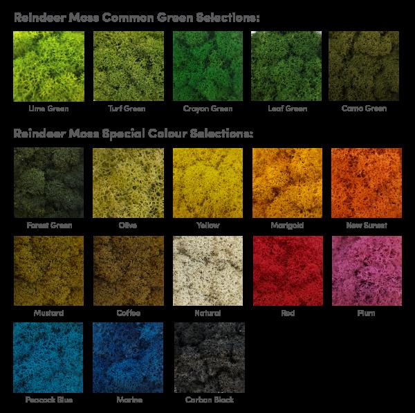 reindeer moss colour selection