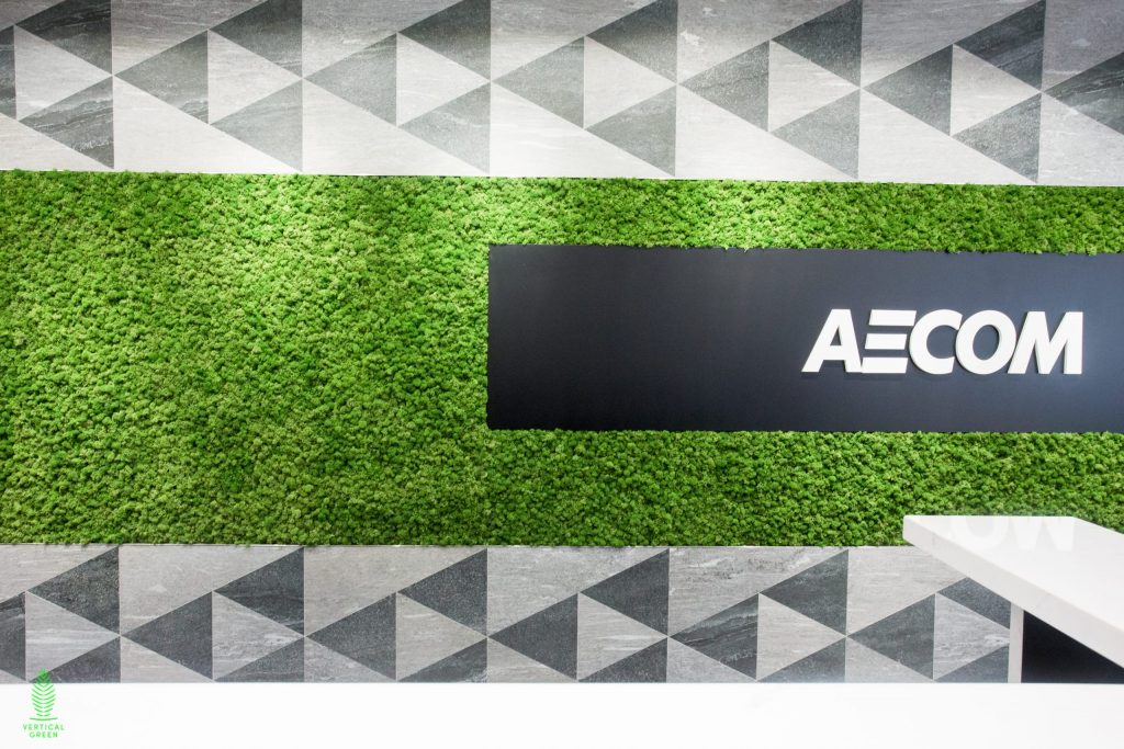 moss wall office singapore