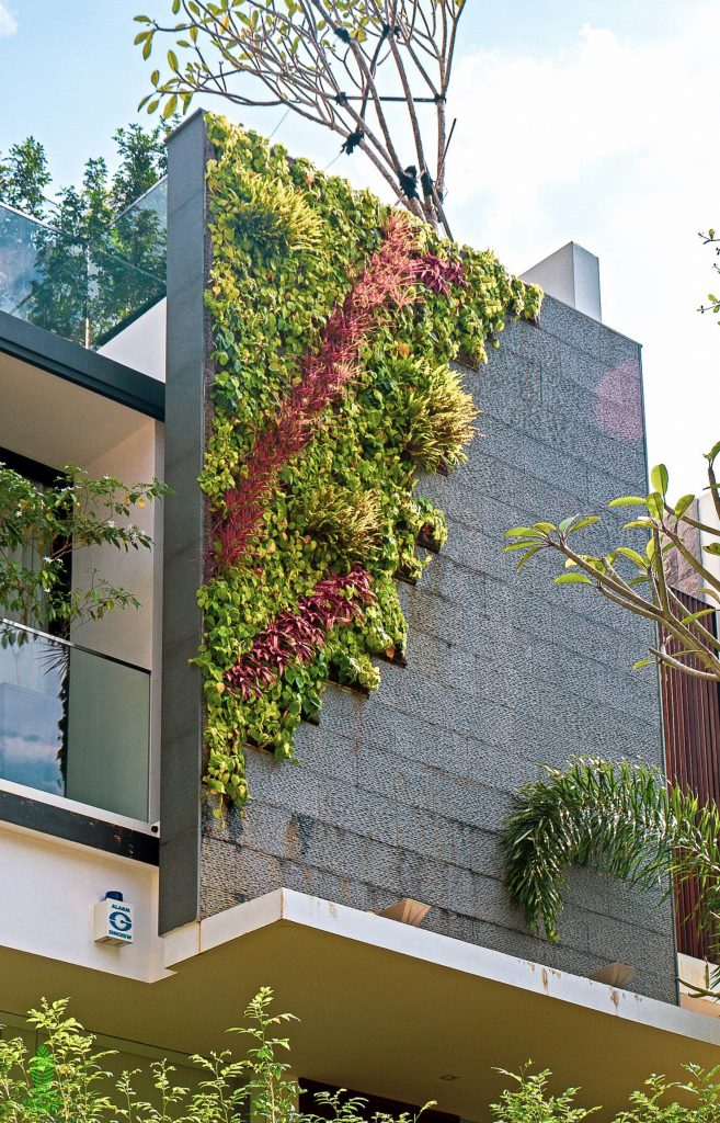 outdoor facade green wall home landed property singapore
