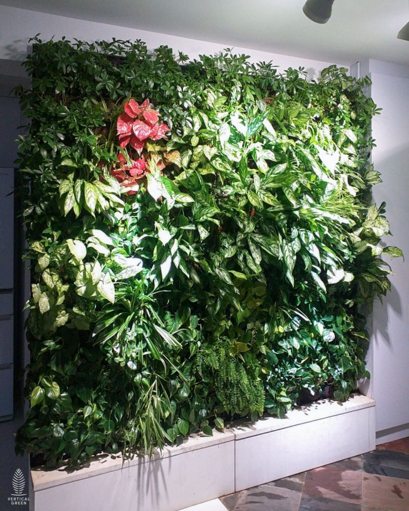 Double Standalone green wall in home singapore