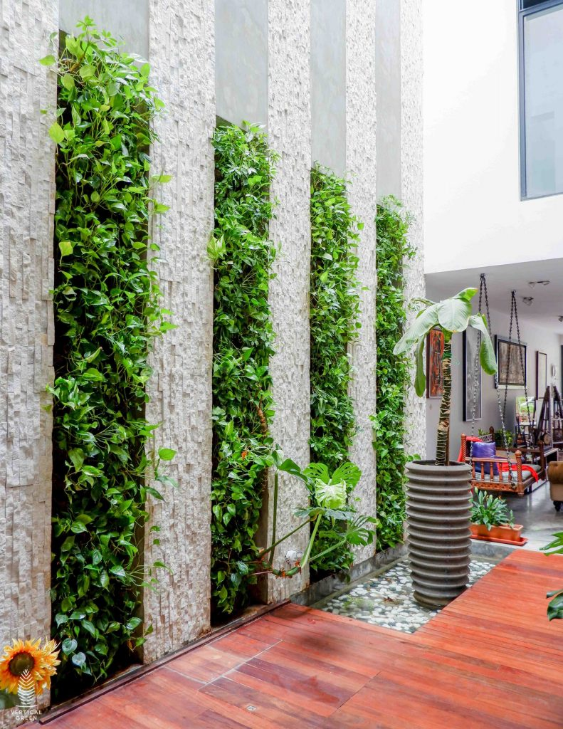 Leo Drive indoor green wall home singapore