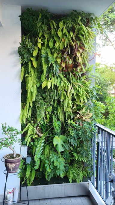 green wall home balcony condominium singapore