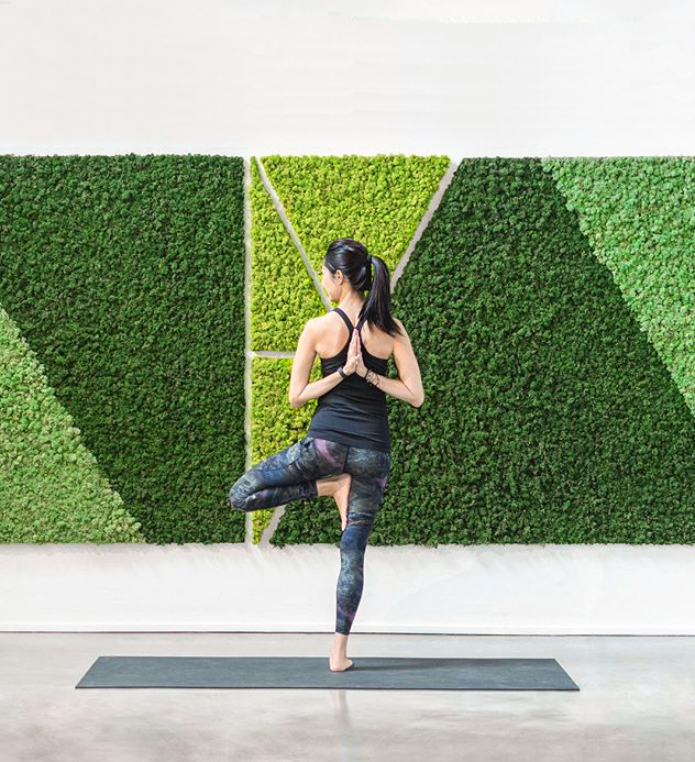 moss wall yoga studio singapore