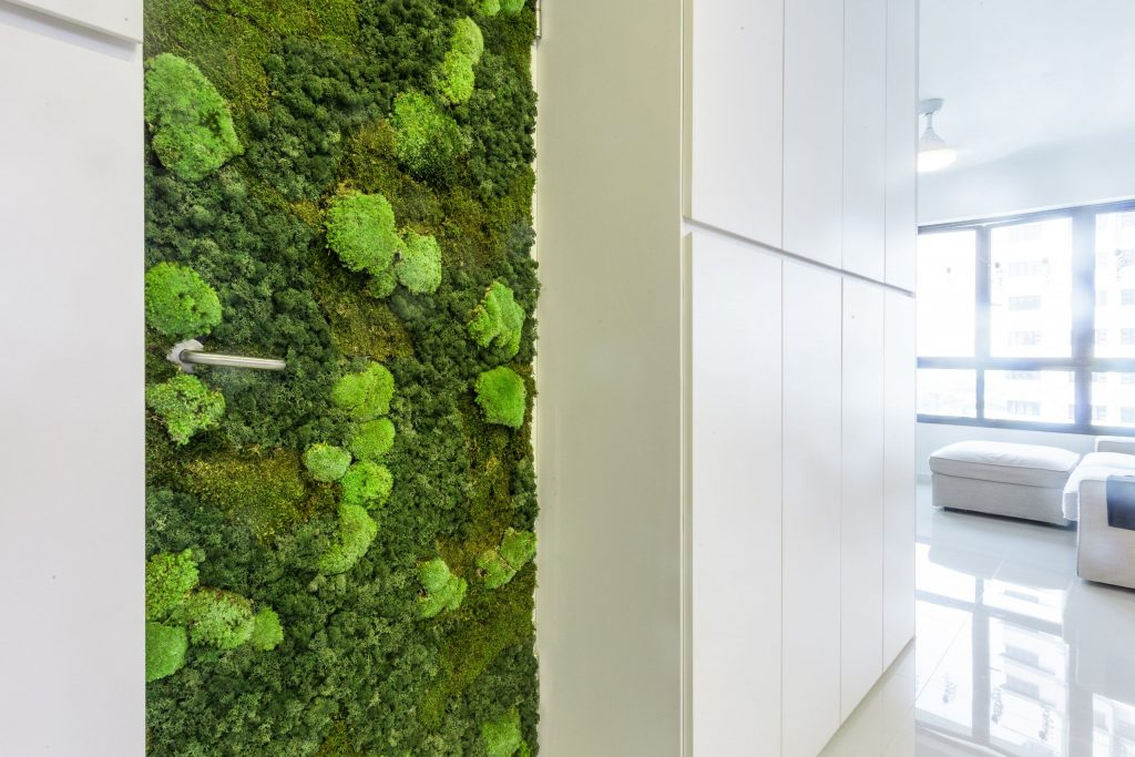 moss wall in home singapore bomb shelter