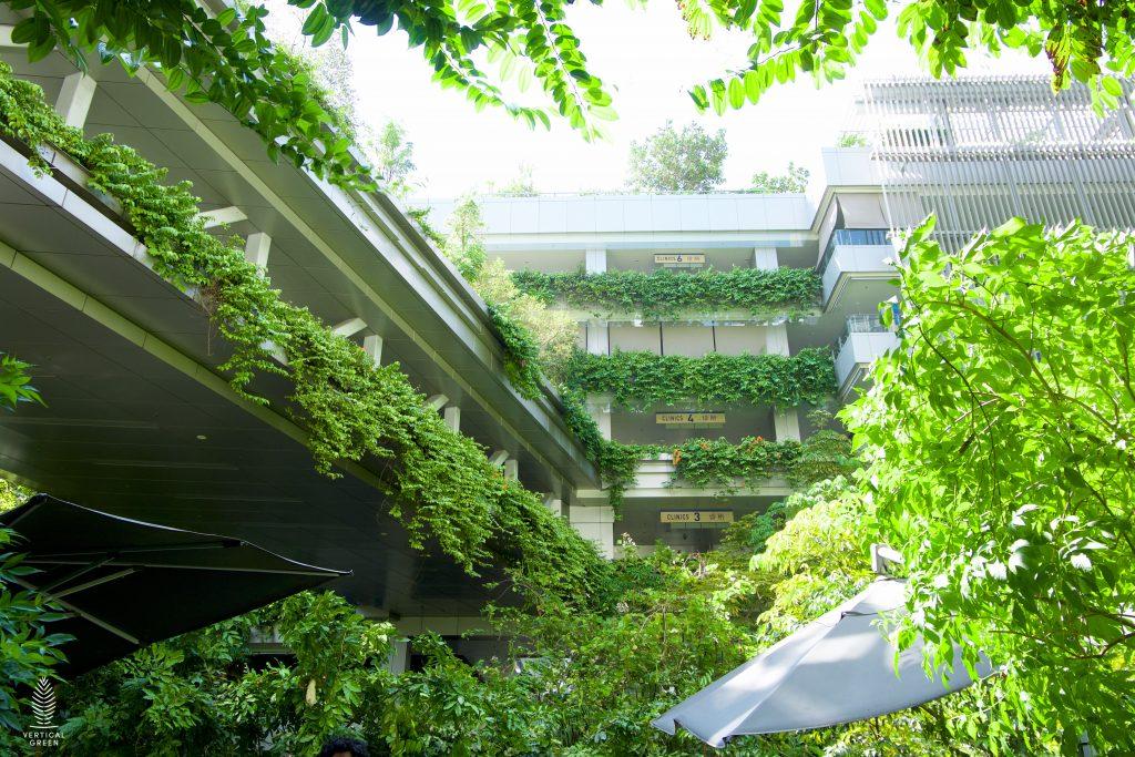 Green hospital plants Singapore