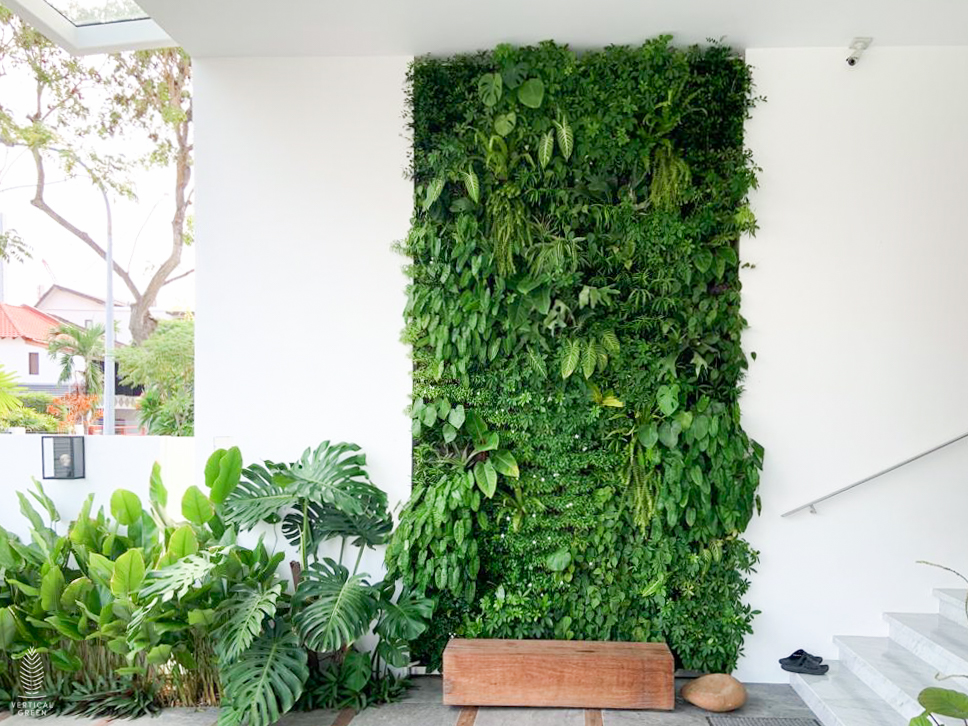 Green wall home garden