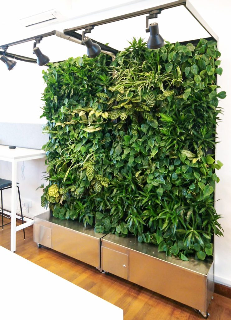 Asia Market Entry Office Green Wall Singapore
