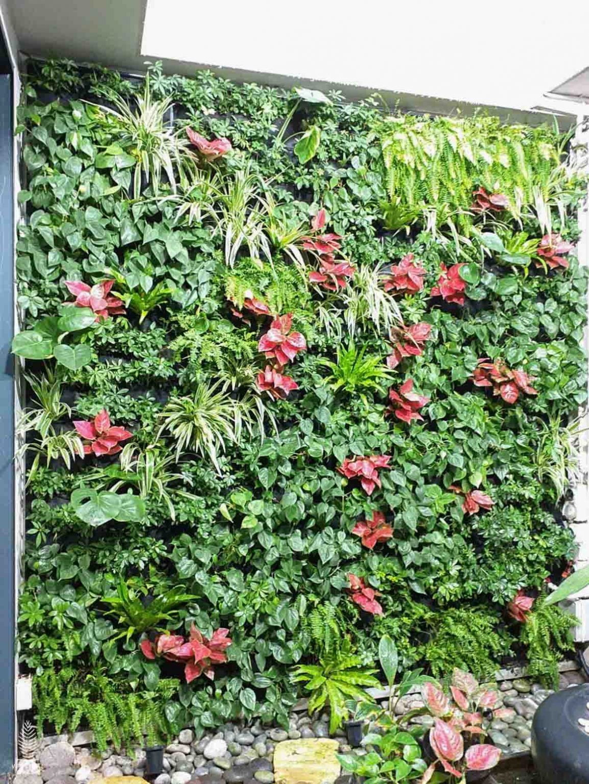 Cowdray Green Wall Airwell Singapore Homes