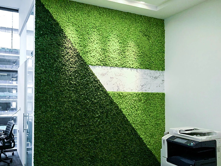 Moss Wall Global Power Office Singapore