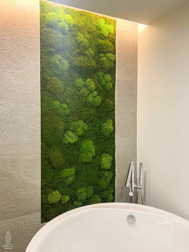 Home Moss Wall in bathroom Singapore