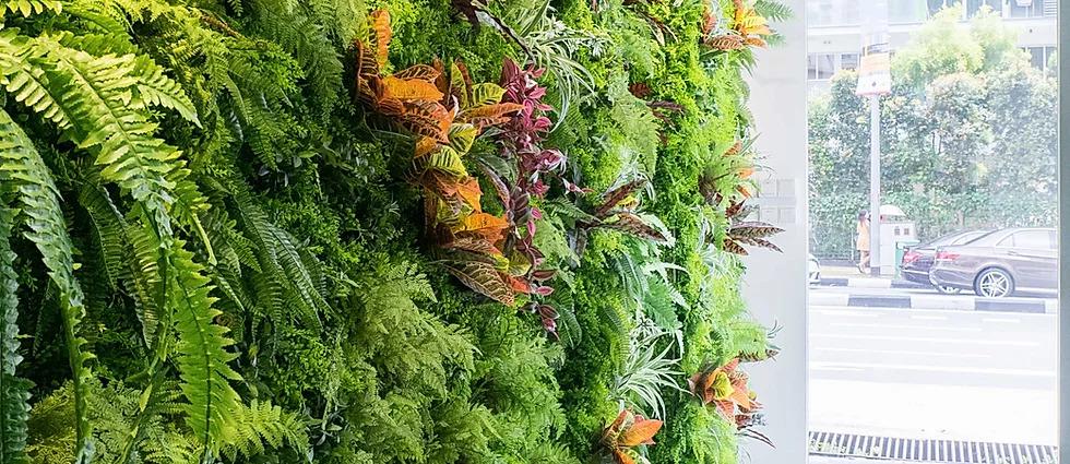 artificial plants clean maintenance service singapore