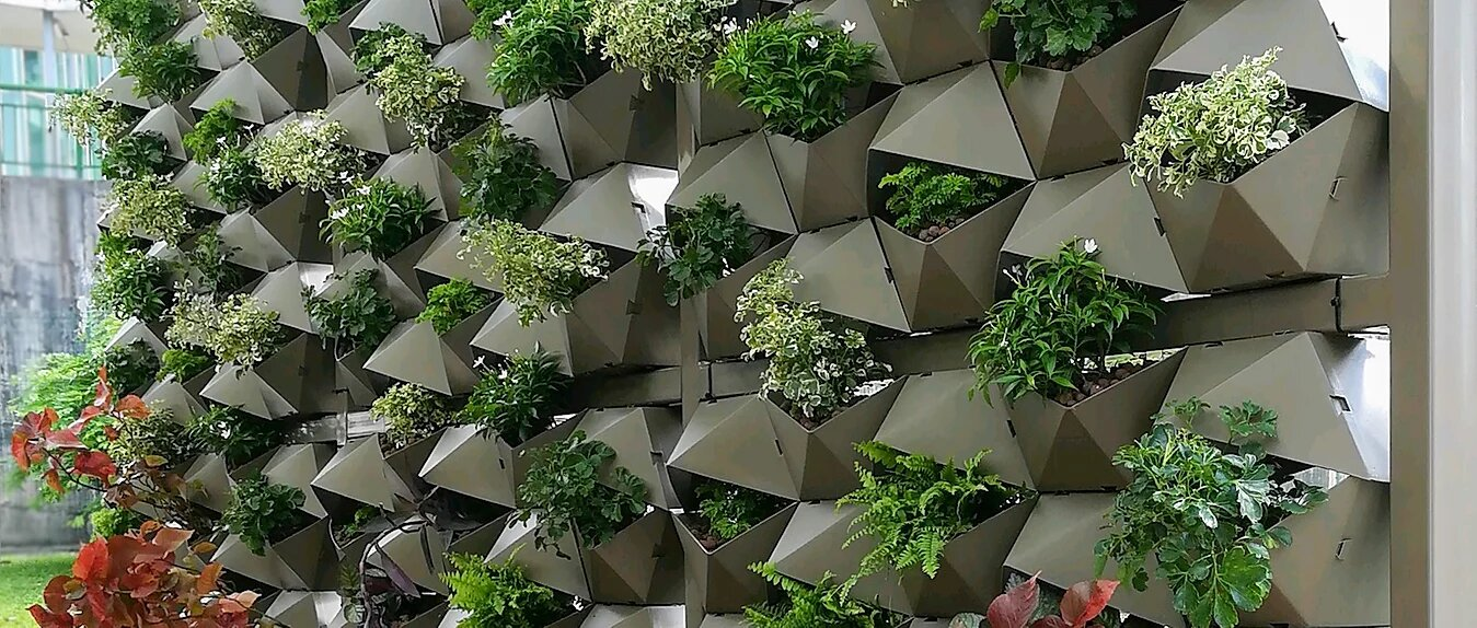 Tanglin Trust School origami vertical greenery