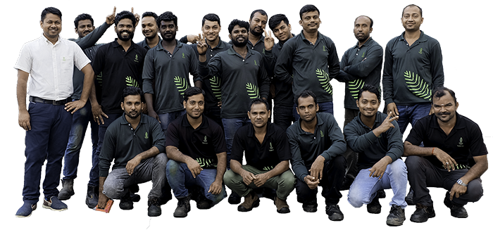 vertical green maintenance team singapore