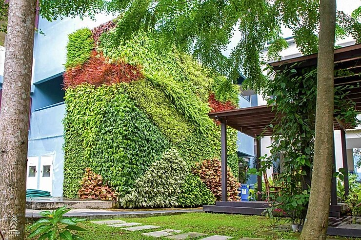 green wall in schools Singapore outdoor