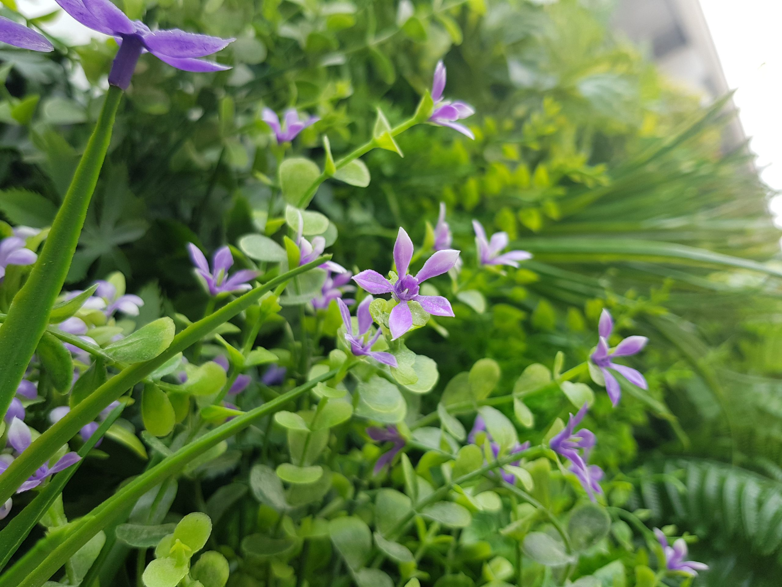 artificial plant green wall singapore vg purple
