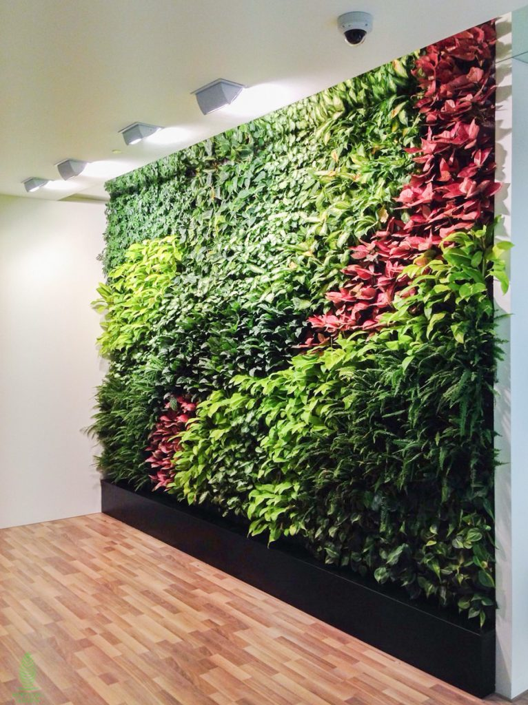 green wall office Singapore