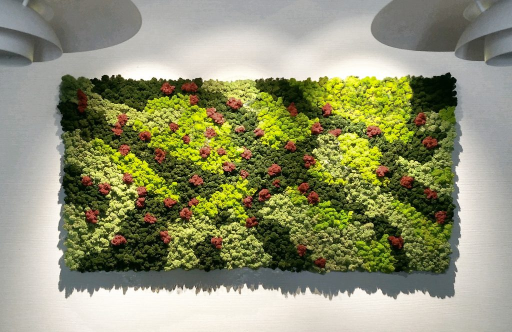 moss wall decoration for homesingapore