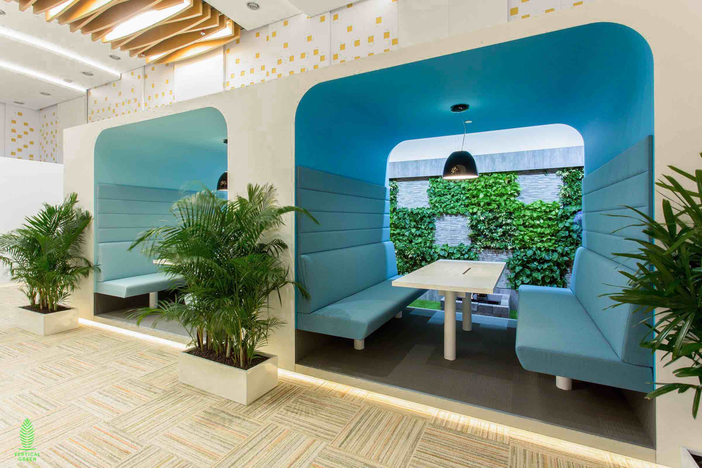 potted plants in visa office singapore