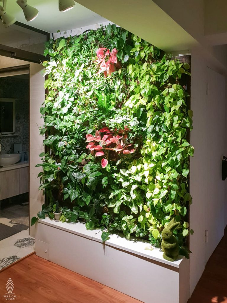 green wall home singapore
