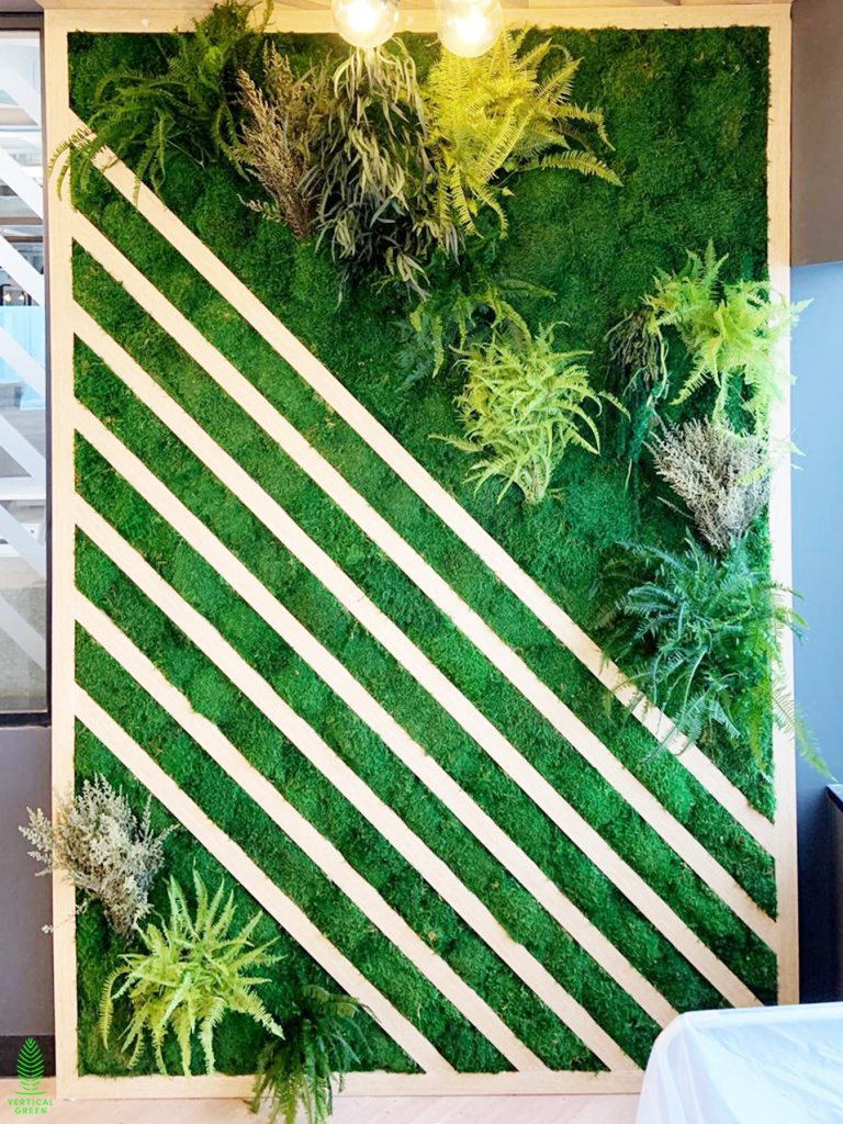 moss wall with preserved plants in office Singapore
