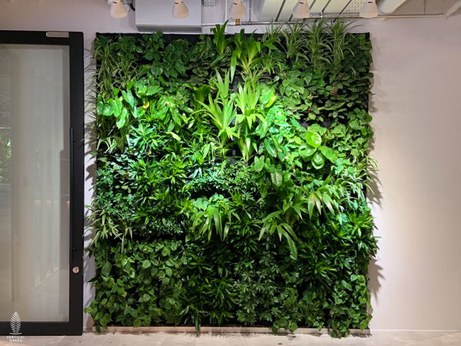 Green Wall at Transferwise Singapore office live plants
