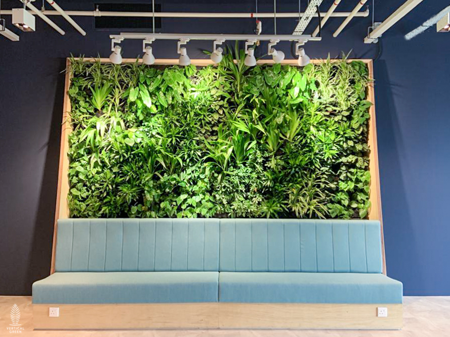 Green Wall at Transferwise Singapore office live plants with seating
